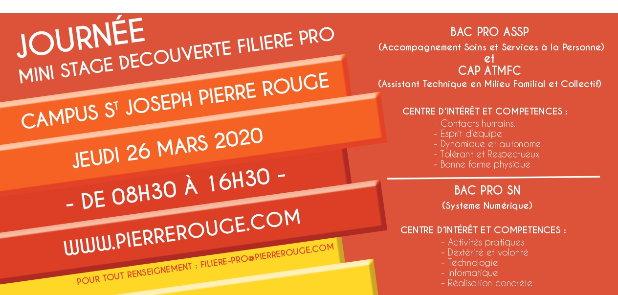Flyer Journe Mini Stage Filiere Pro 2020